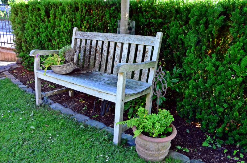 Kübelpflanzen und Gartenmöbel