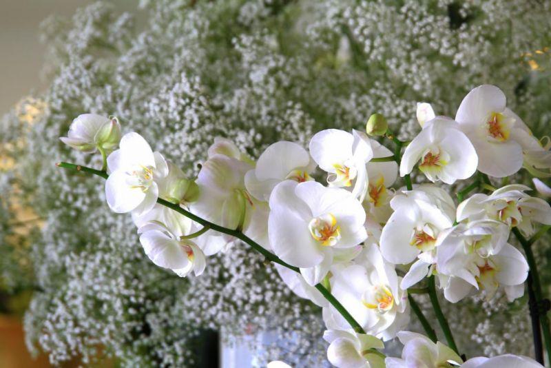 Foto 20 von Der Herzliche Blumenladen in Stuttgart