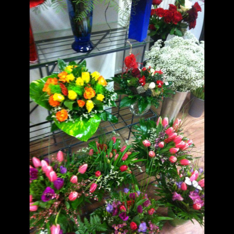 Eintrag #7449 - Blumen Paradies - Sindelfingen