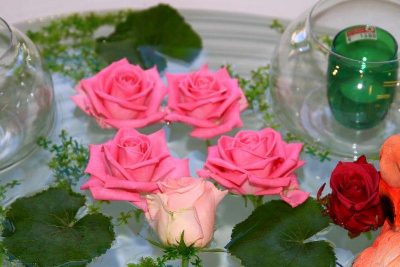 Foto 8 von Der Herzliche Blumenladen in Stuttgart