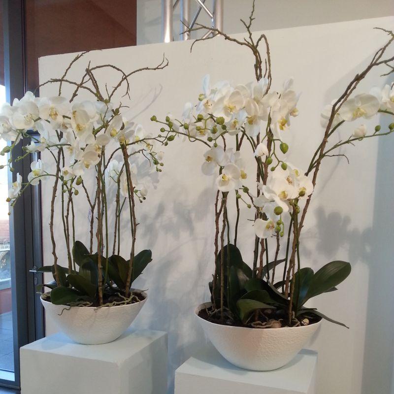 sia kunstblumen und pflanzen villa toscana schwetzingen geschenkartikel. Black Bedroom Furniture Sets. Home Design Ideas