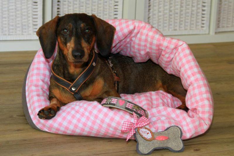 Foto 18 von DOG beauty-lounge in Stuttgart