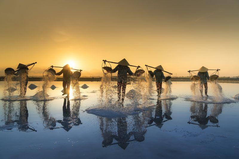 https://pixabay.com/en/salt-hon-khoi-vietnam-field-3060093