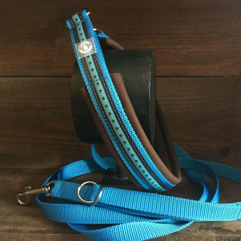 Halsband mit Bordüre und Neopren mit passender Leine  - Pro Cane Leinenmanufaktur - Hundeladen Sillenbuch - Stuttgart