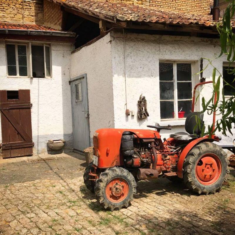 Bauernhofgeburtstag