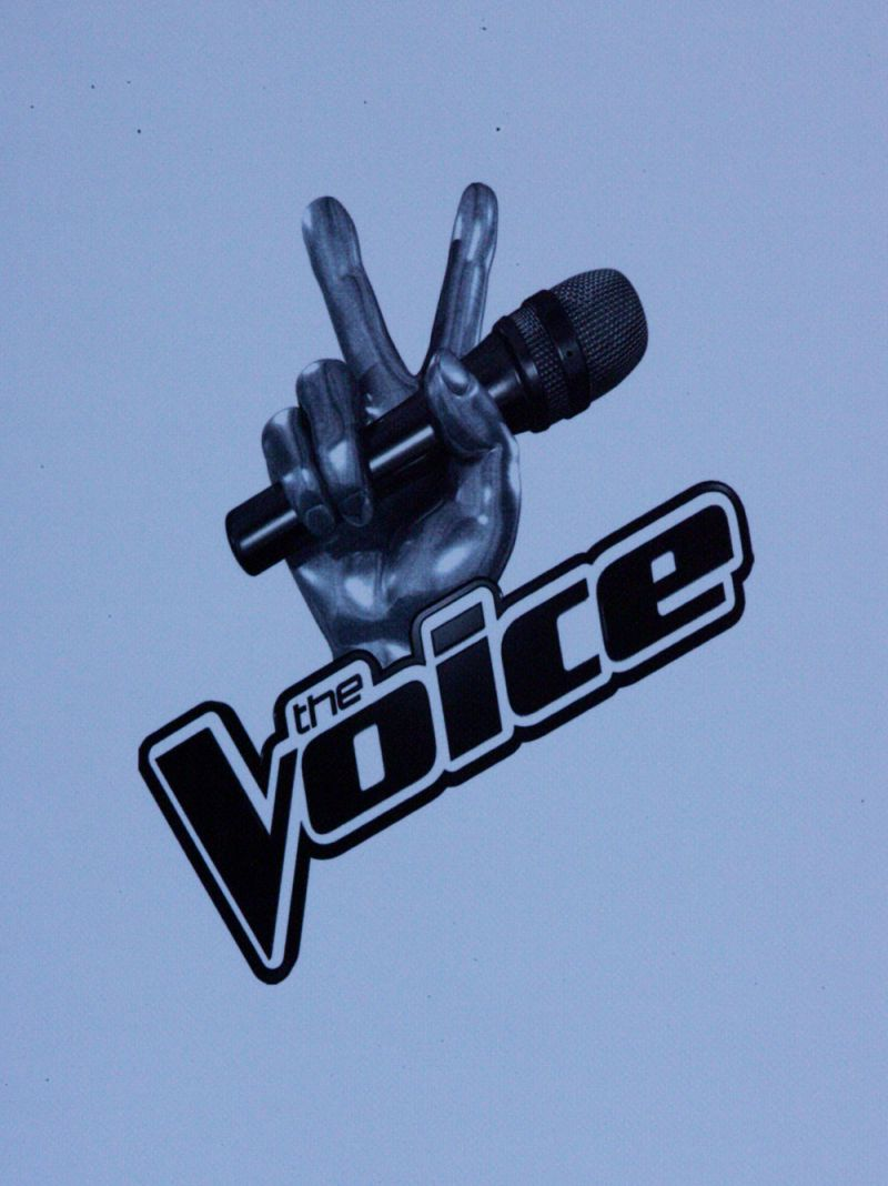 flickr.com/Eva Rinaldi/The Voice/https://www.flickr.com/photos/evarinaldiphotography/9203450343/