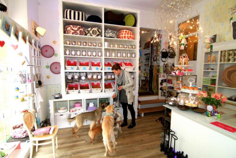 Photo von DOG beauty-lounge in Stuttgart