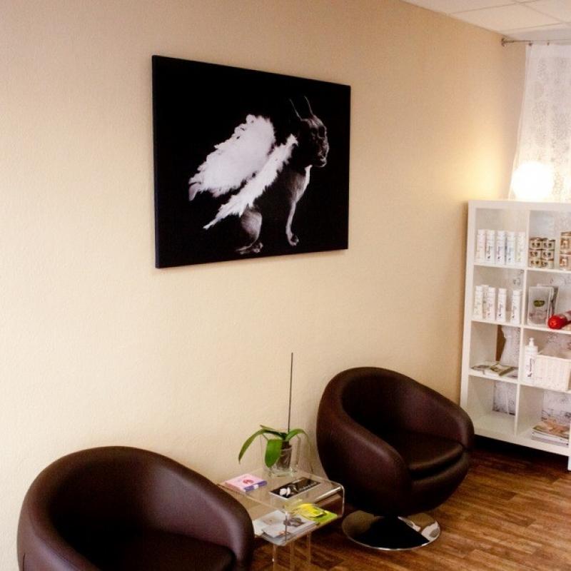- die Hunde Lounge - Stuttgart- Bild 7