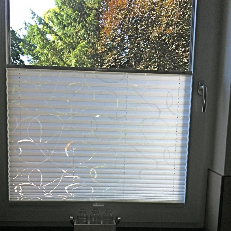 Jalousien Mannheim 20 20 20 20 20 20 20 sommer sonnenschutz aktion auf mhz plissees jalousien rollos