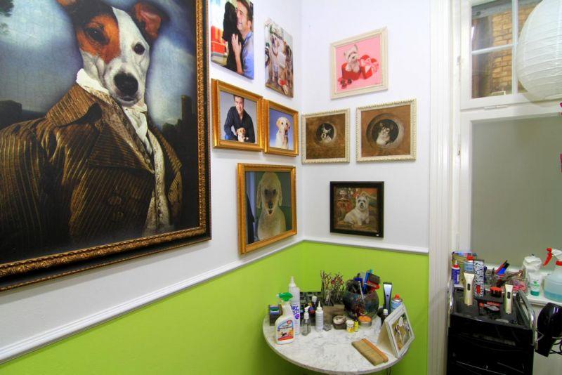 Foto 11 von DOG beauty-lounge in Stuttgart