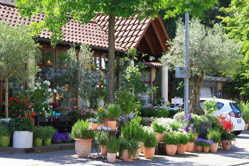 Foto 1 von Der Herzliche Blumenladen in Stuttgart