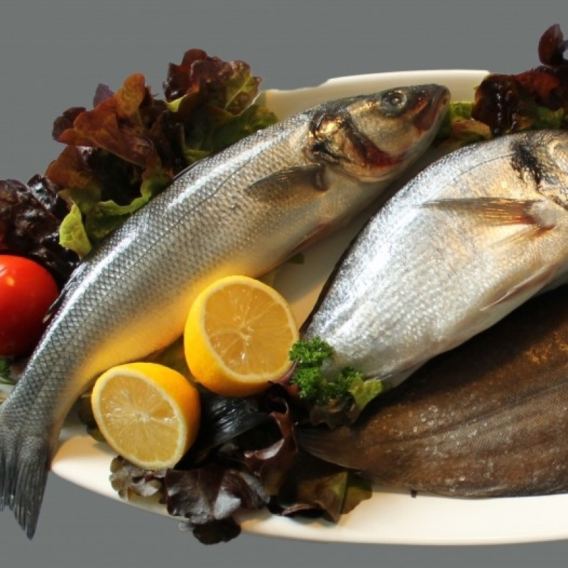 Fisch Mannheim - Ristorante Garda - Mannheim
