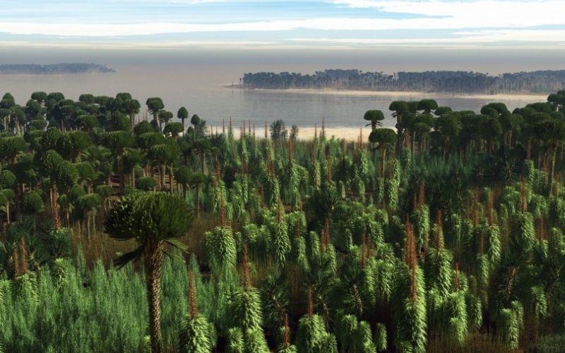 Rekonstruktion des ältesten Waldes der Welt basierend auf den archäologischen Funden, Mitteldevonflora von Lindlar, ca. 390 Millionen Jahre, M. Kriek, Amsterdam / LVR-LandesMuseum Bonn - (c) M. Kriek, Amsterdam / LVR-LandesMuseum Bonn