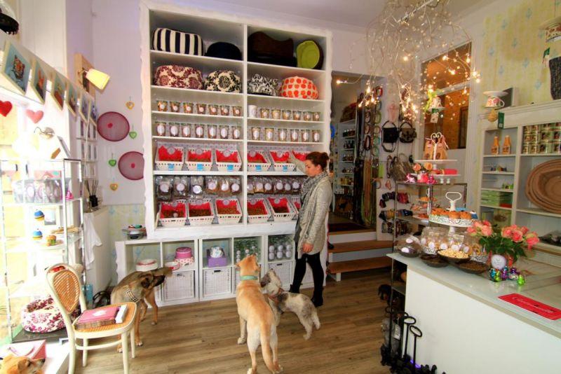 Foto 8 von DOG beauty-lounge in Stuttgart