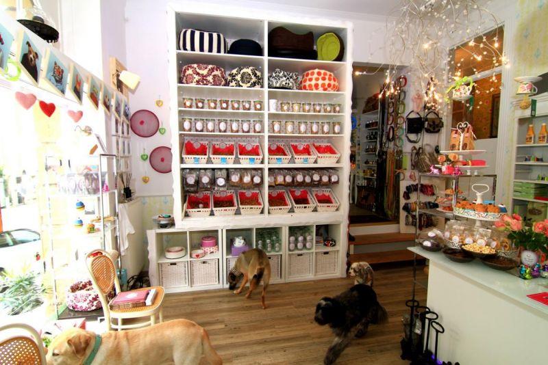 Foto 10 von DOG beauty-lounge in Stuttgart
