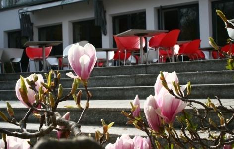 Foto 7 von Malkasten Restaurant + Bar in Düsseldorf