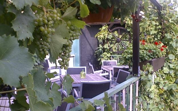 Foto 1 von Hotel Würdener Hof in Gummersbach