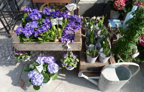 Photo von apart Blumen und mancherlei Schönes drum herum in Berlin