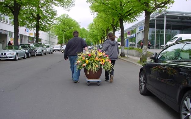 Foto 3 von fiorellino in Berlin