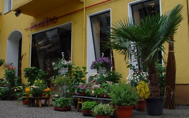 Foto 2 von fiorellino in Berlin
