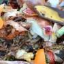 https://pixabay.com/de/kompost-obst-und-pflanzliche-abfälle-709020/