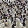 Ein Meer aus weißen Kleidern und schwarzen Anzügen.